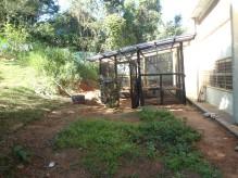 Viveiro Escola - MP Itapevi (1)